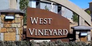 West Vineyard at Badger Mountain South
